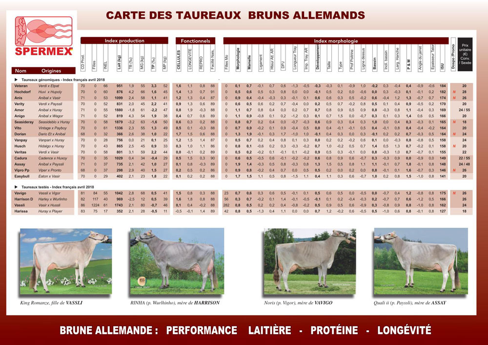 Tarif JLD Genetics Spermex race Brune avril 2018